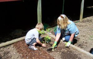 Newnan MG Planting May 15 021